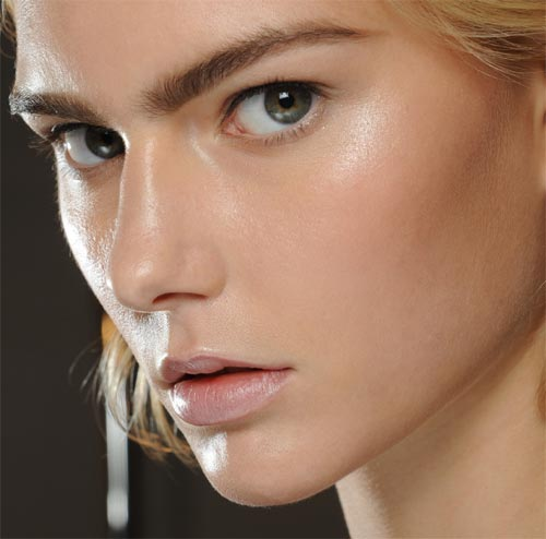 "The Truth About The ""Dewy"" Look – A Pretty Addiction"