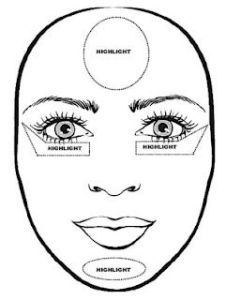 oval face contour